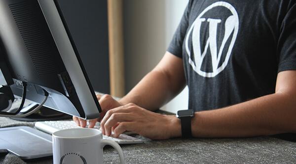 We start selling WordPress themes soon
